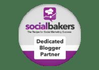 Blogger/partner
